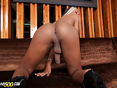The gorgeous and sexy Pilar Grisales makes her Trans500 debut today.This beauty looks delicious in her red outfit.Perfect caramel skin and a bangin body.Watch her stroke that perfect shecock of hers and show off that amazing ass.Let's give the sexy Pilar