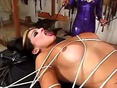 Masked madam spanking poor shemale